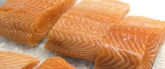Бесплатный Вебинар (на англ. яз.) – В центре внимания: экологически сертифицированный лосось из России