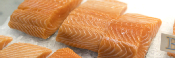 Free Webinar: Making the Case for Sustainably-Certified Russian Salmon